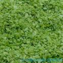 Vert Olive COE92